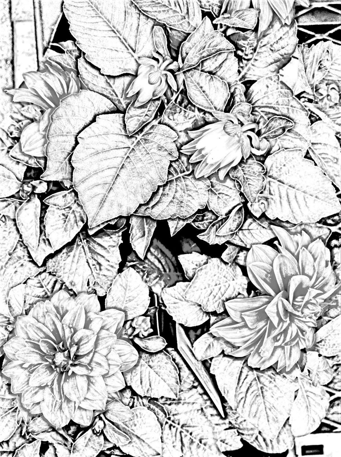 A Garden Of Flowers Blending Colors Using Oil Pastels Dibujos Artistas Dibujos De Flores