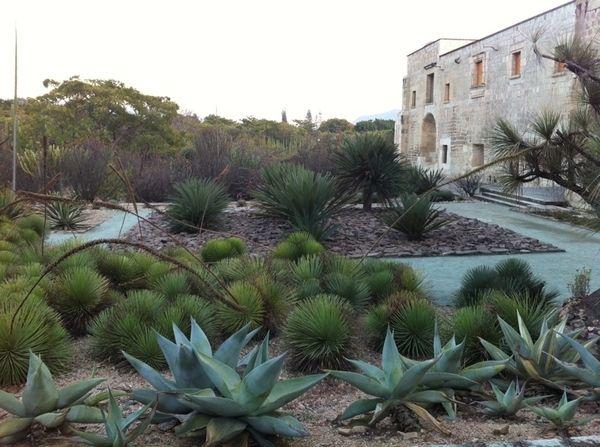 Gartengestaltung mit Pflastersteinen, Ziergräsern und Kies - gartengestaltungsideen mit kies