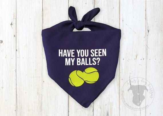 Funny Have you Seen my Balls Dog Bandana in Navy Blue with