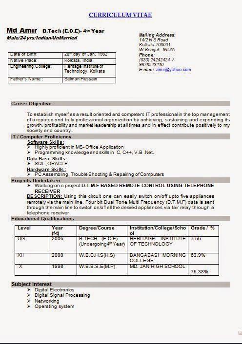 graphic resume template CURRICULUM VITAE Sample Template Example of