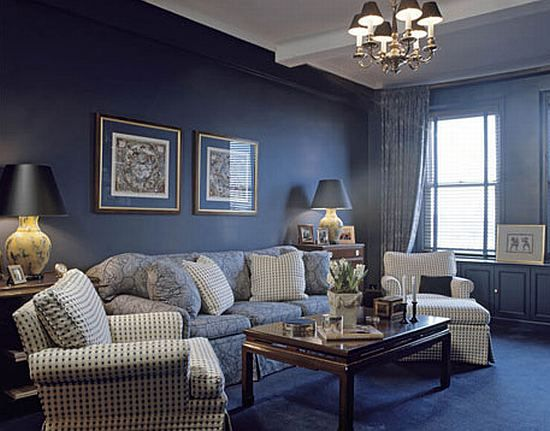 Room  Elegant navy blue living room with carpet flooring