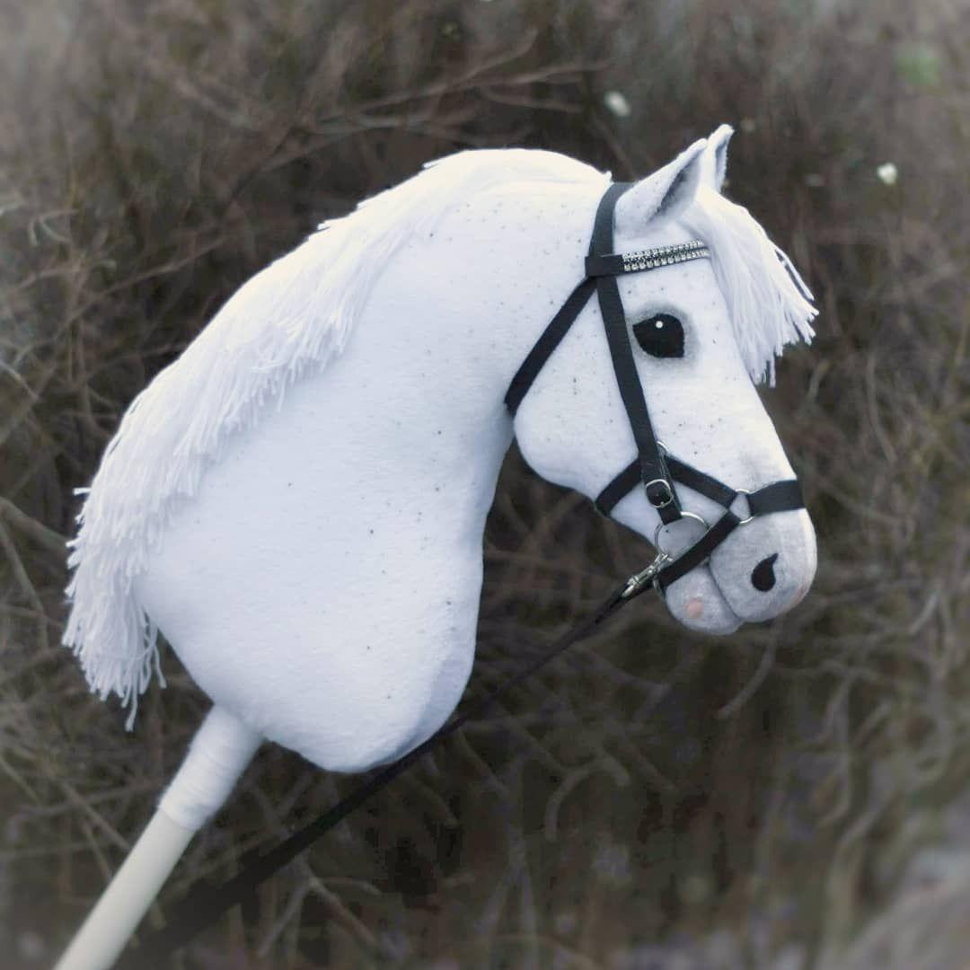 Hobbyhorsing