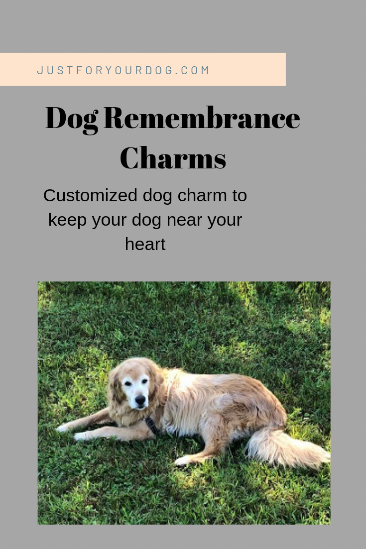 How To Remember Your DogDog Remembrance Charms Dogs