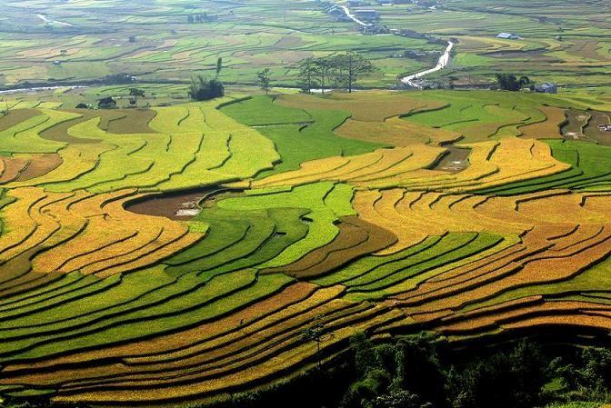 Mu Cang Chai, Vietnam   Vietnam Travel