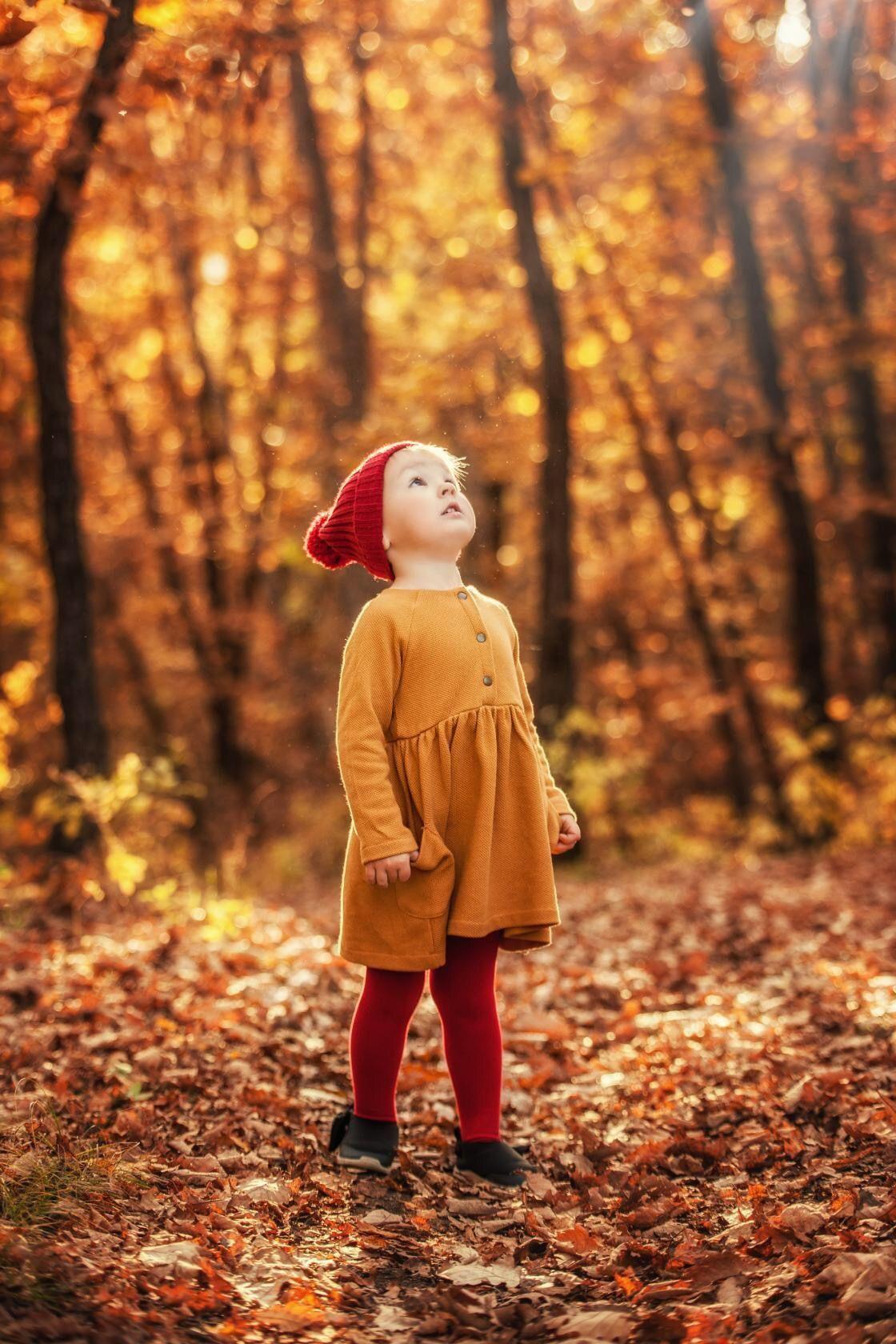 В осеннем лесу   Осенние семейные фотографии, Осенние фото ...