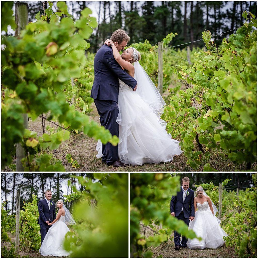 Outdoor Wedding Venues New Zealand: Darjon Vineyard Wedding (With Images)