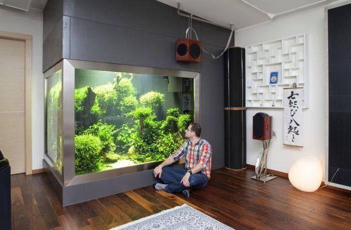 In wall aquarium i 39 d never leave home aqua scape - Casas con peceras ...