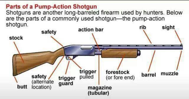 parts of a pump action shotgun girls \u0026 guns firearms, shotgun