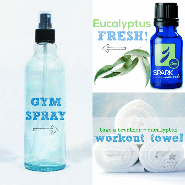 Sweat Towel Water Bottle: Eucalyptus Gym Spray And Towel