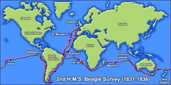 7th November 1836 With Images Beagle Charles Darwin