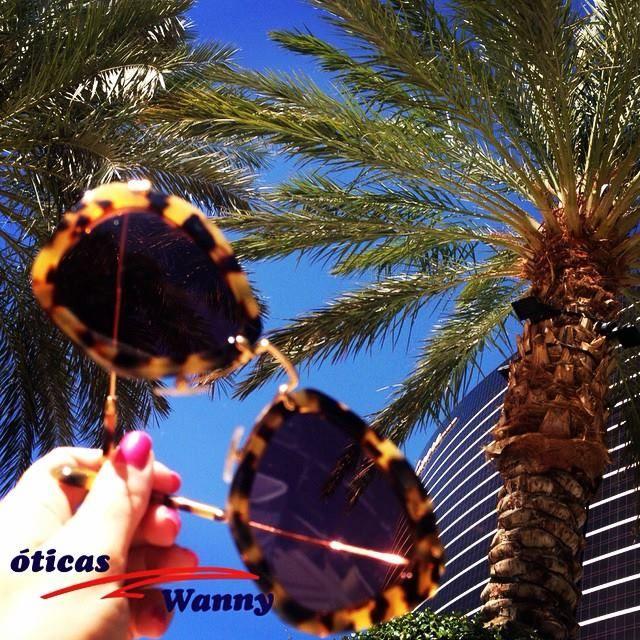 Vamos aproveitar a luz do dia! #oculos #de #sol #miu #miu #miucha #oticas #wanny #online #shop #sunglasses