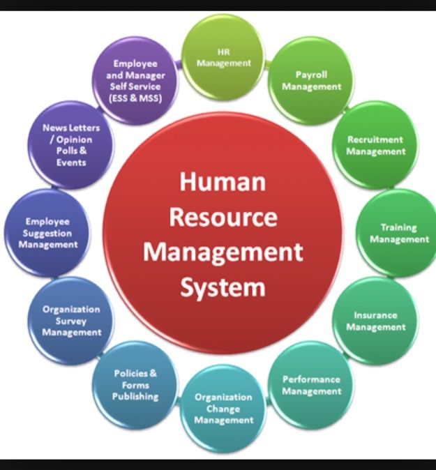 Human Resource Development: What Is It?
