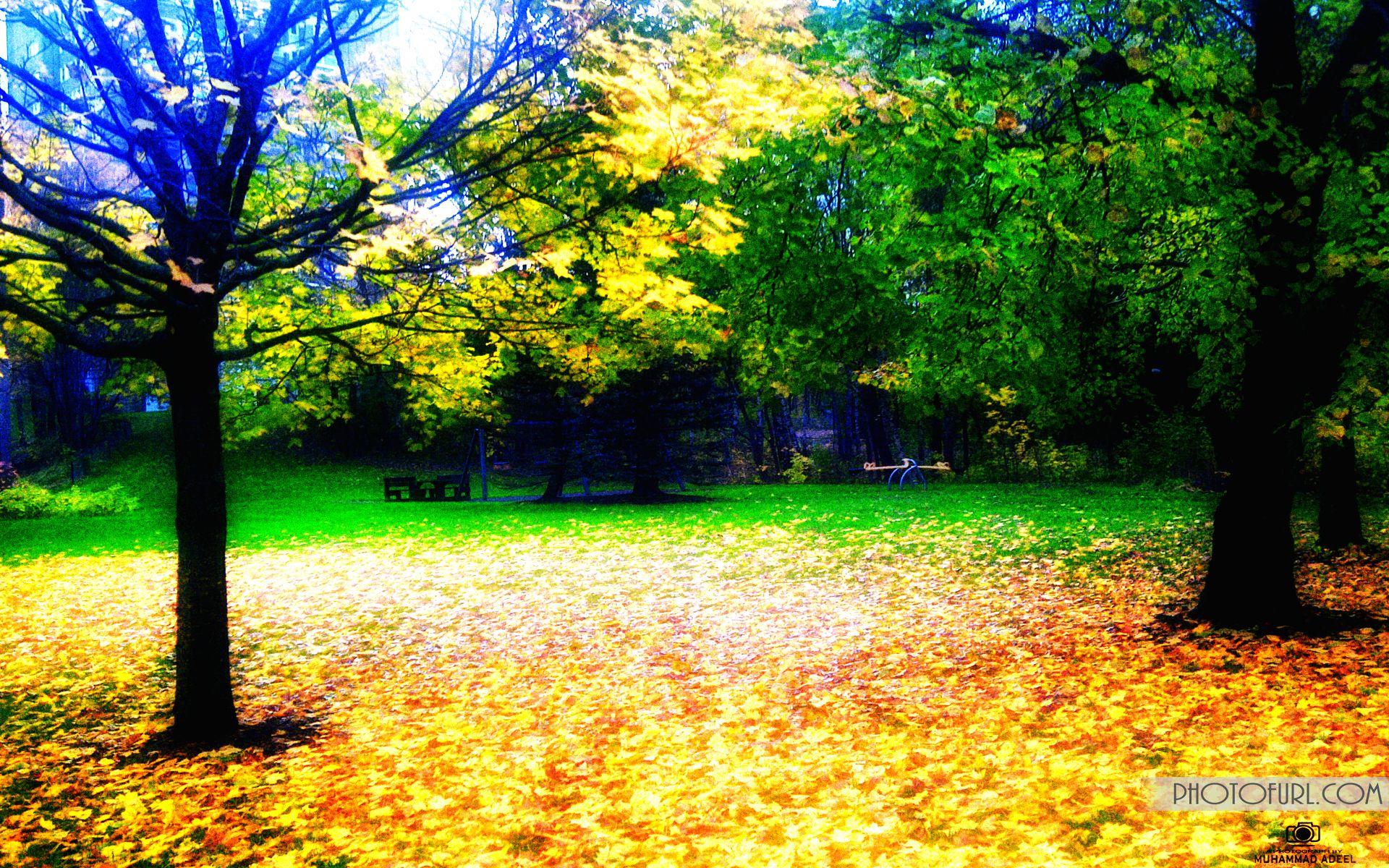Hd Nacher Wallpaper Beautiful Nature Wallpaper Hd Nature Wallpapers Beautiful Landscape Wallpaper