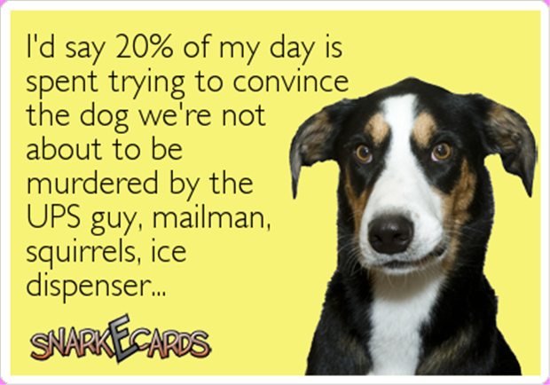 Funny Pictures Of The Day 91 Pics Dog Quotes Ecards Funny Dog Person