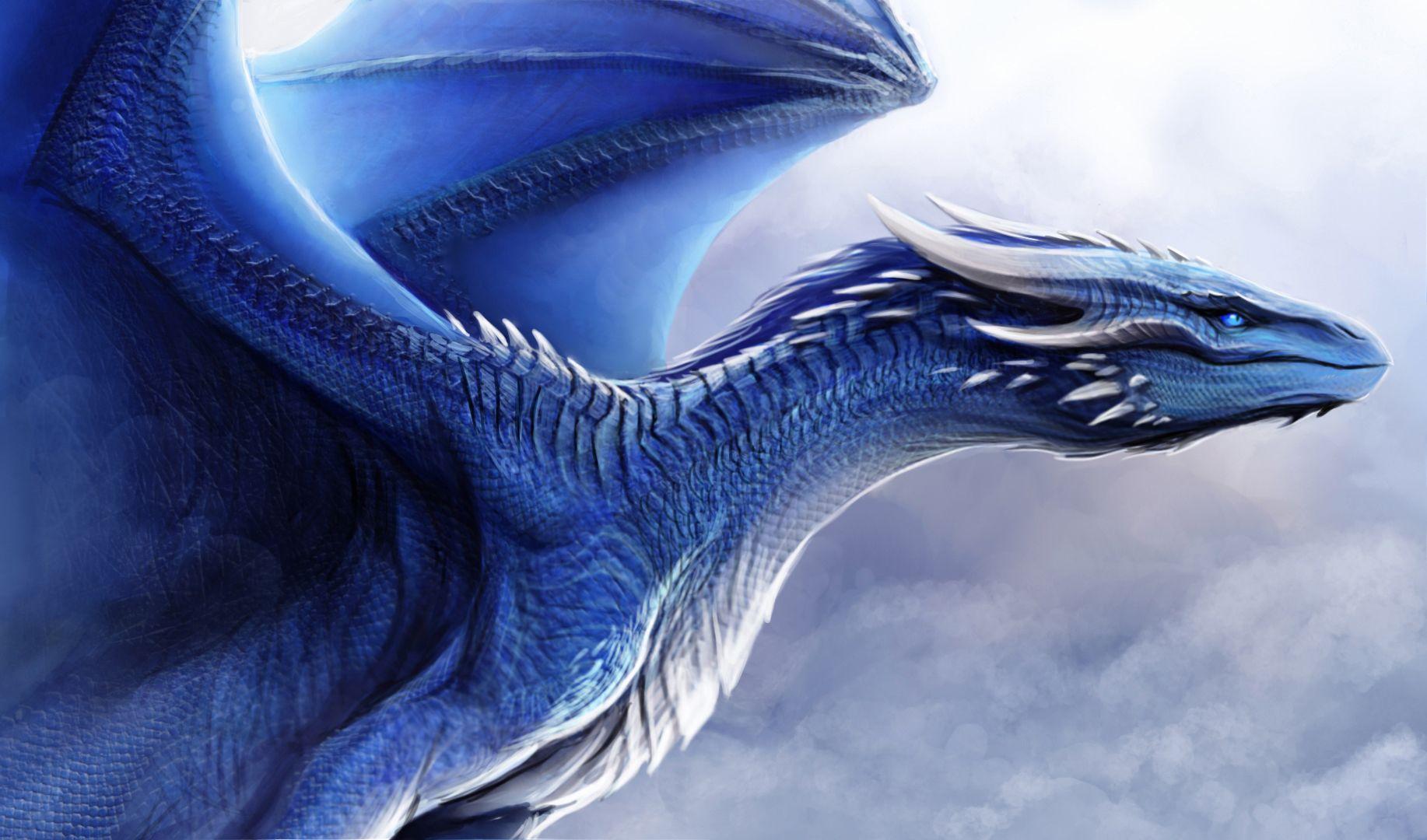 Картинки синего дракон