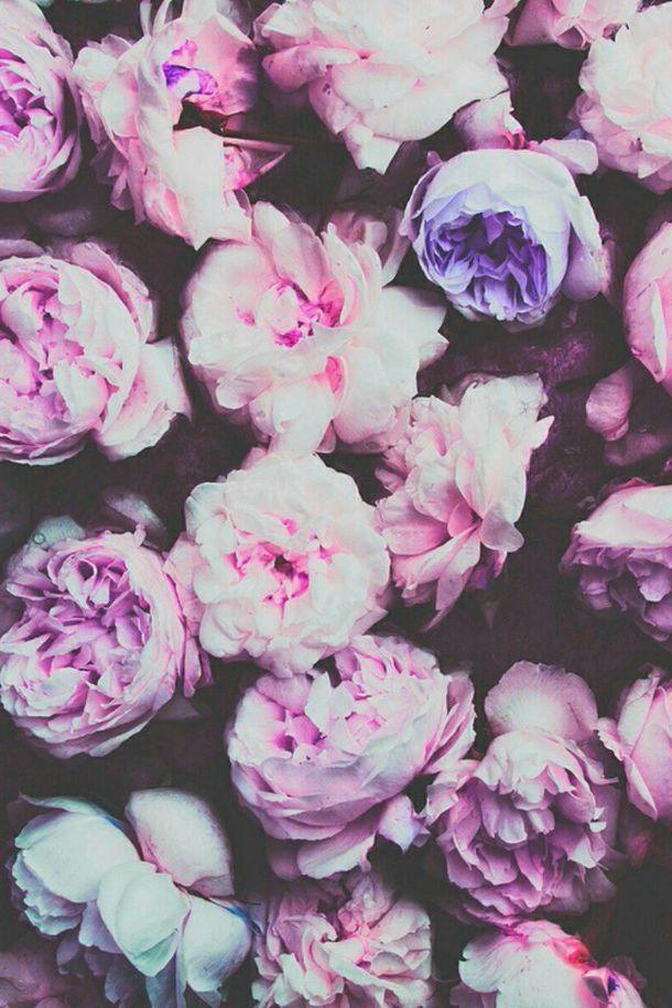 Фото Заставки Красивые На Телефон