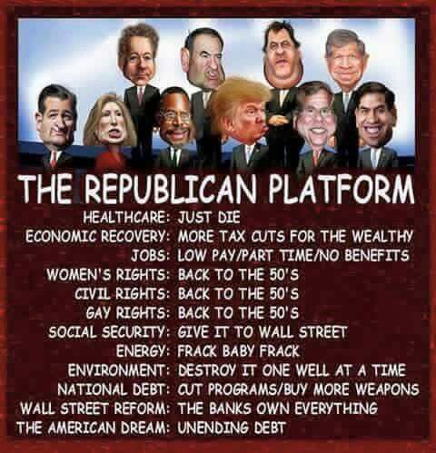 The Republican Platform  2015
