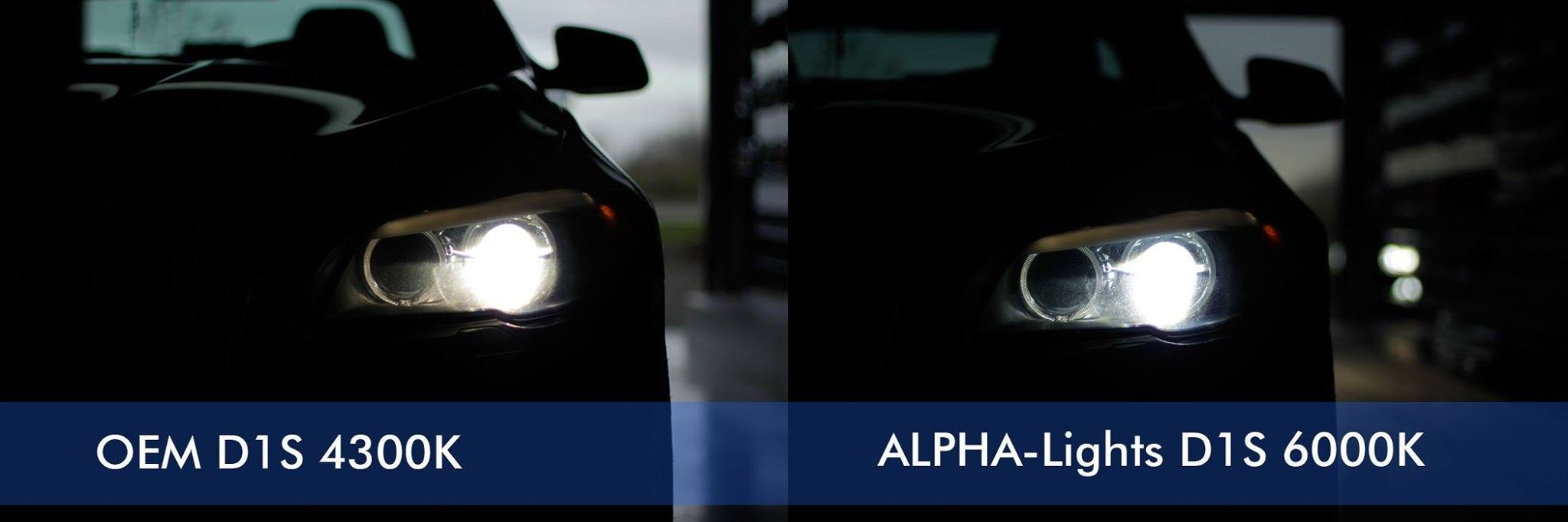 bmw f10 met alpha lights d1s 6000k xenon lampen