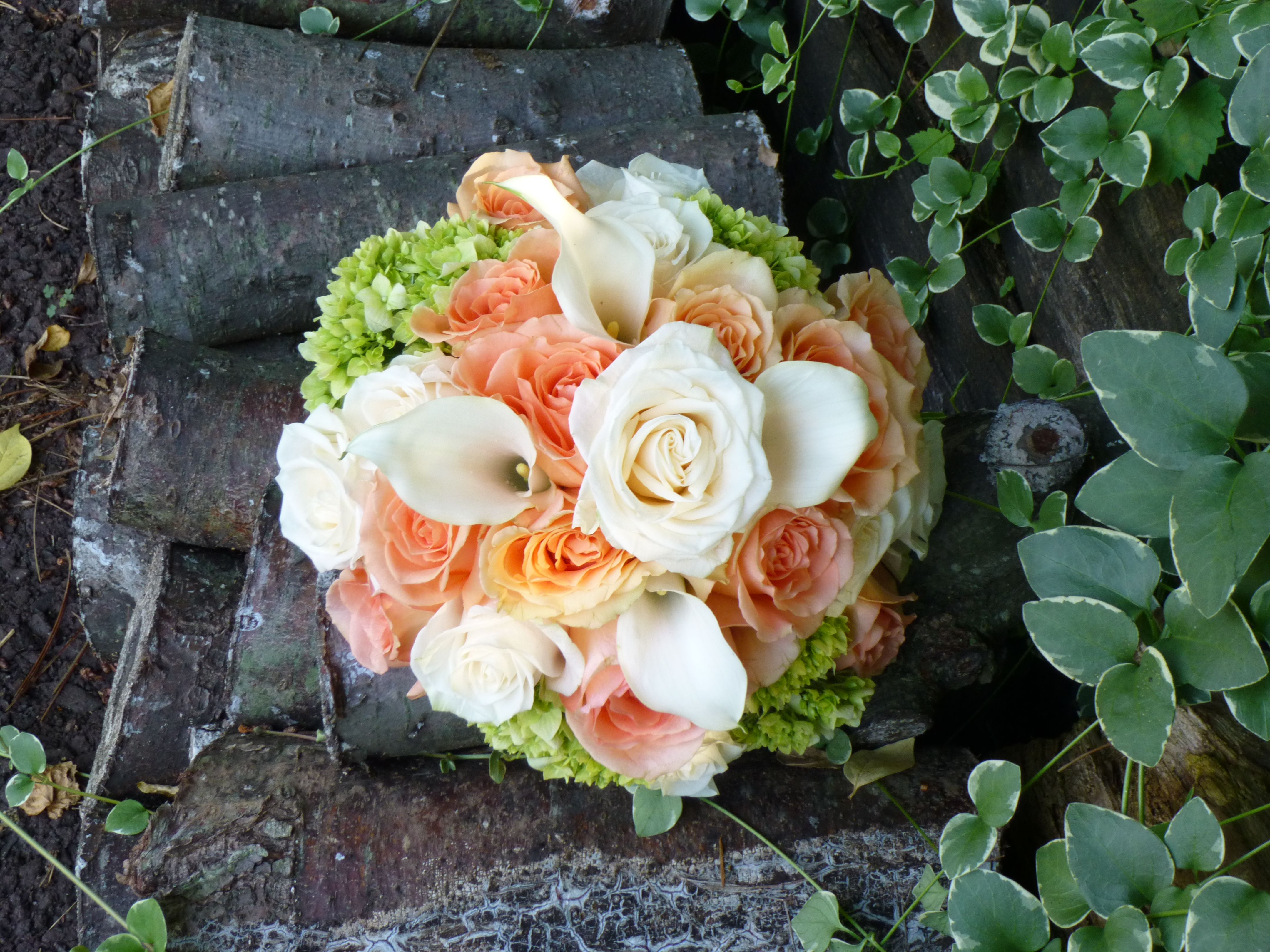 Peach Wedding:  Bouquet of peach roses, ivory roses, mini-calla lilies, and hydrangea.  Designed by Whimsical Welcomes Floral Design  Phila, PA