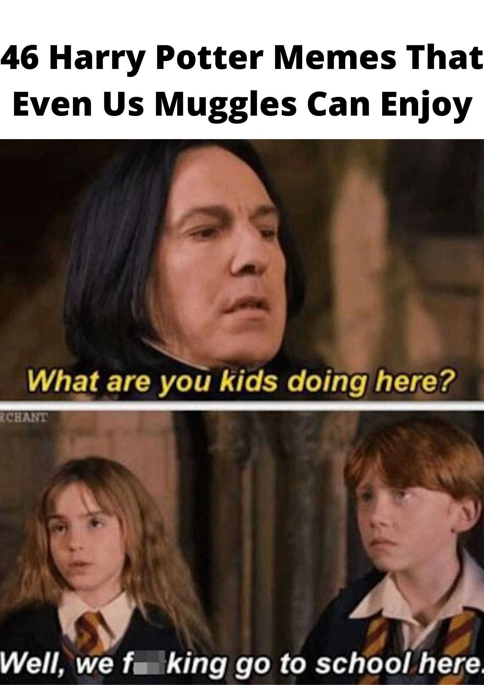 46 Harry Potter Memes That Even Us Muggles Can Enjoy Harry Potter Memes Memes Awkward Photos