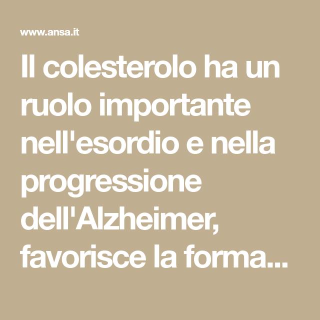 Il Colesterolo Ha Un Ruolo Importante Nell Esordio E Nella Progressione Dell Alzheimer Favorisce La Formazione Di Aggregati Alzheimer Cervello Consigli Utili