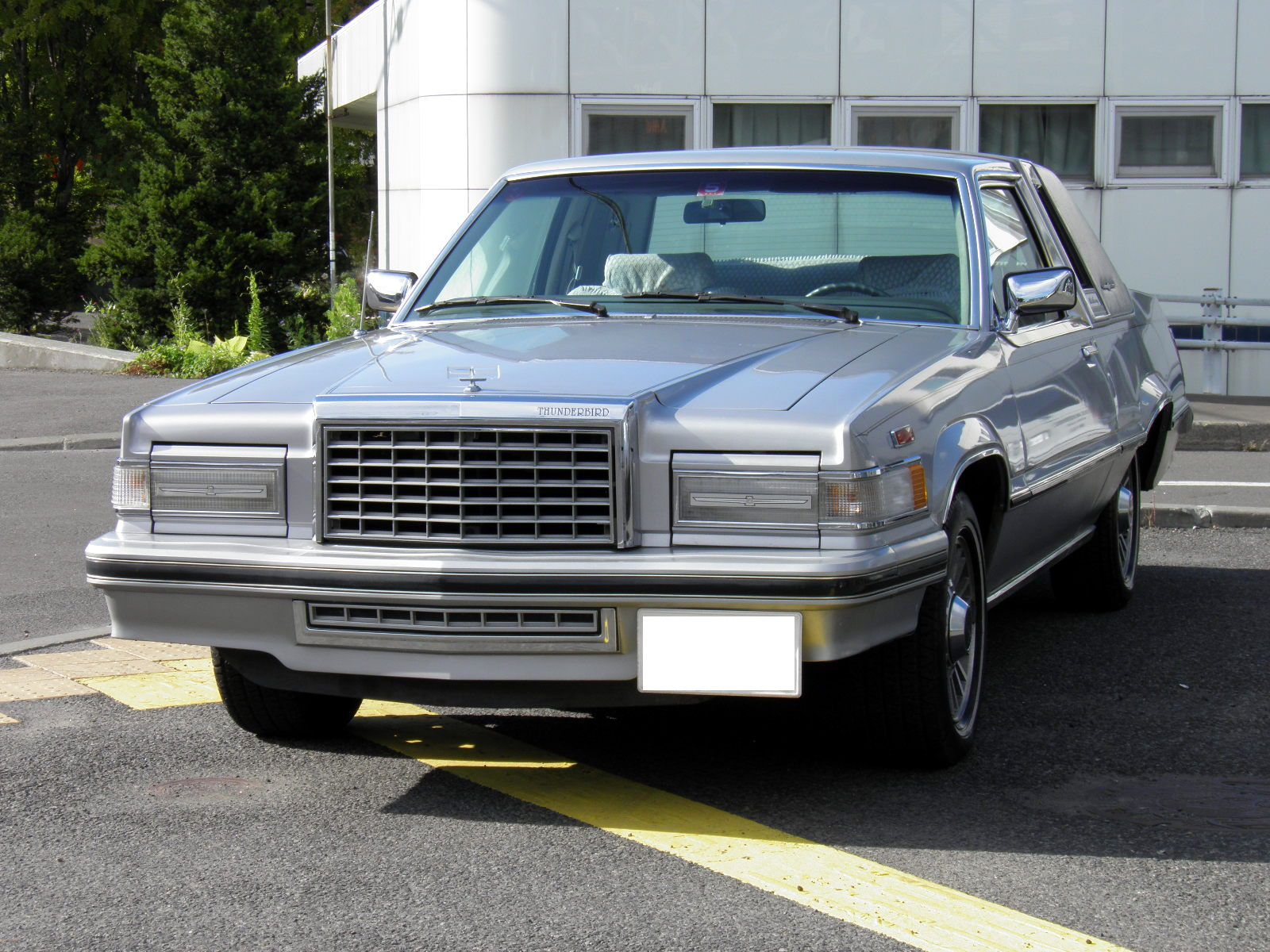 1980-82 Ford Thunderbird | Classic Cars | Pinterest | Ford ...