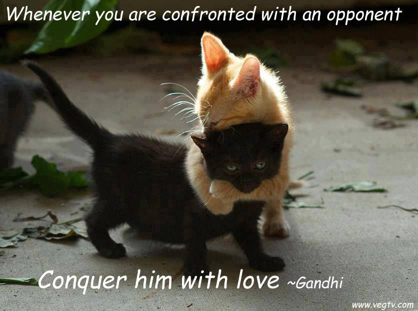 conquer with love