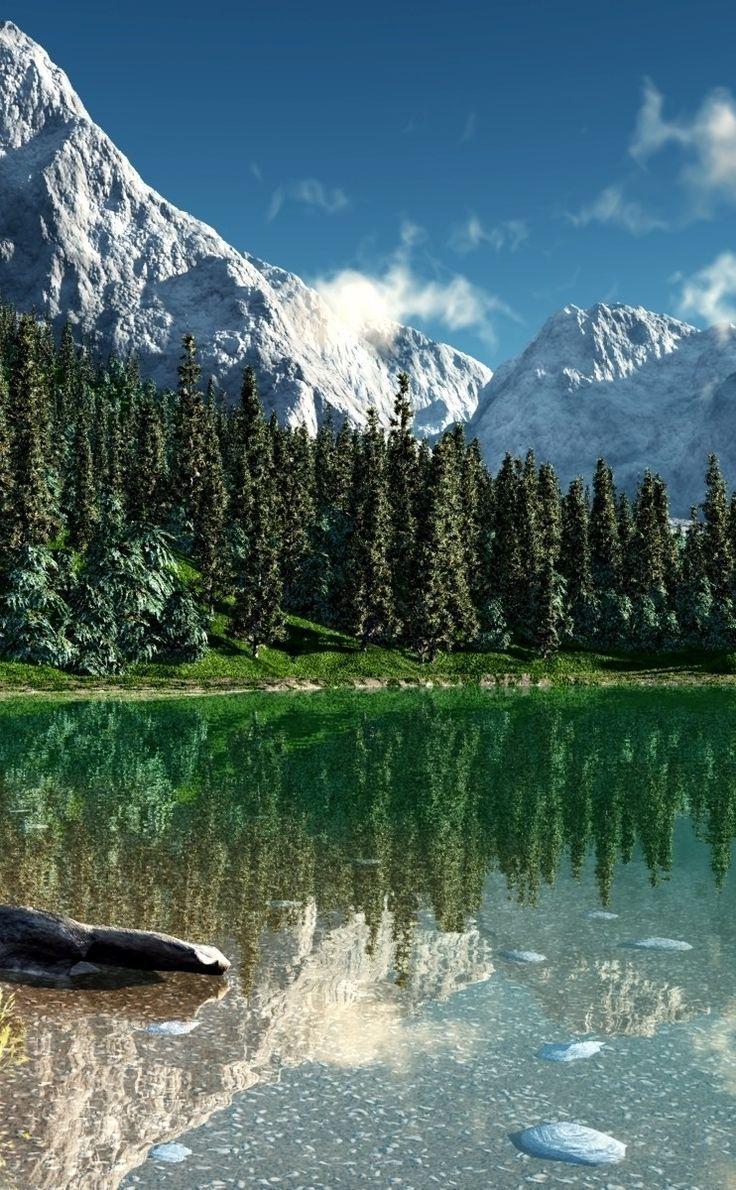 Maravilla Möbel wilde natur zu natur kunst möbel rocky mountain national