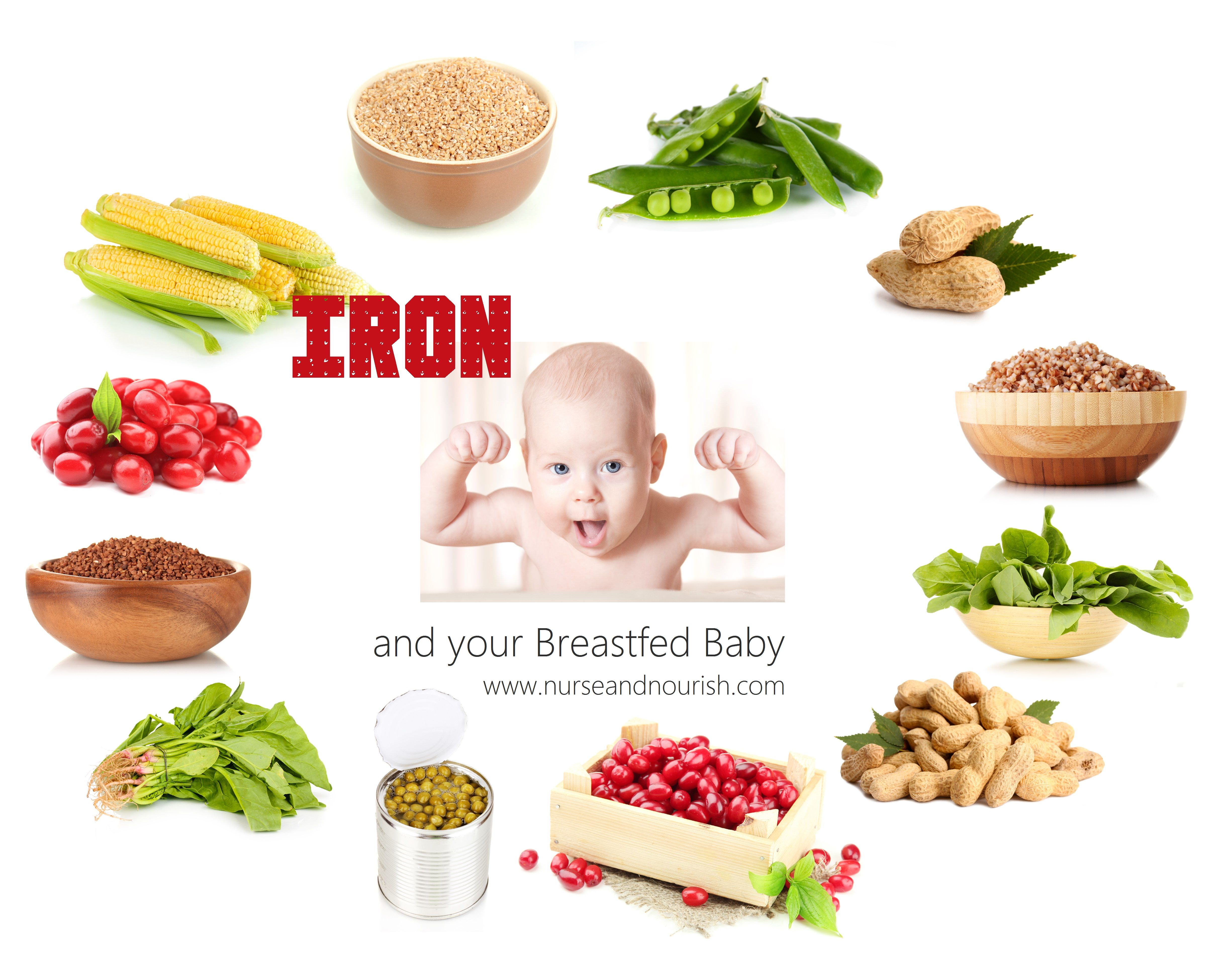 Iron for Breastfed Babies l by Lactation Nutritionist