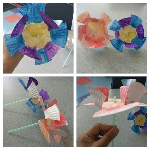 3D Flowers , small paper plate cut into 8 sections. Paint , lift up every other petal , cut out small hole and put in a straw.