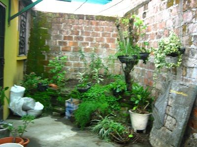 Como decorar un patio peque o dise o de interiores for Como arreglar un jardin pequeno
