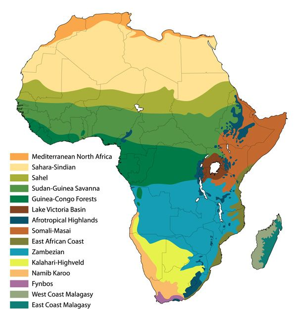 Africa Biomes Map Pin on geo2