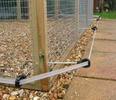 Bon Single Line Electric Fence To Prevent Digging Under Your Chicken Run