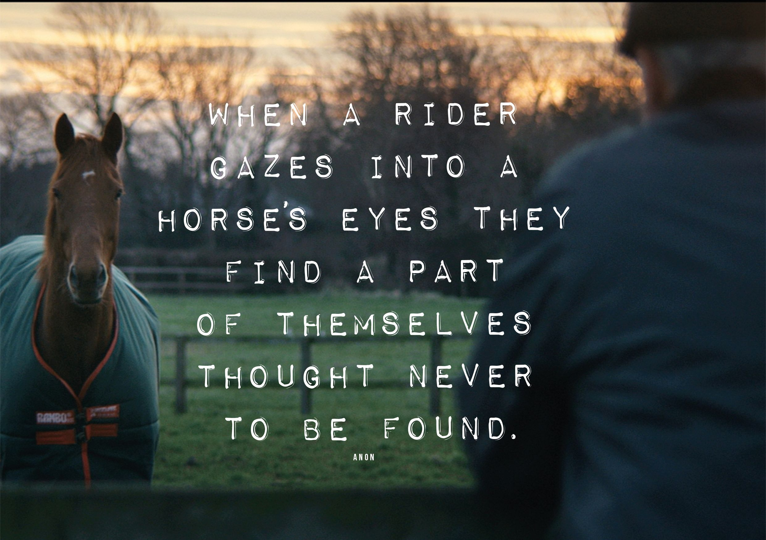Horse and Rider. #horseware #rugsforlife | Horse Quotes ...