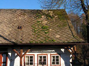 How To Remove Roof Moss Cedar Roof Roof Shingle Repair Cedar Shingle Roof