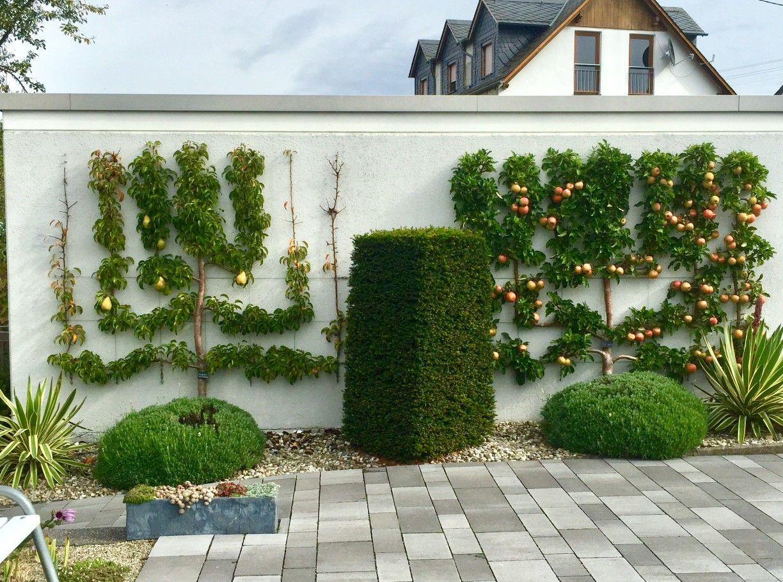 Spalierobst An Garagenwand Gartengestaltung Garten Spalier