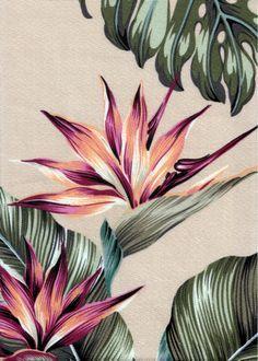 Mohala Taupe Tropical Hawaiian Tropical Hawaiian Leafy Bird Of