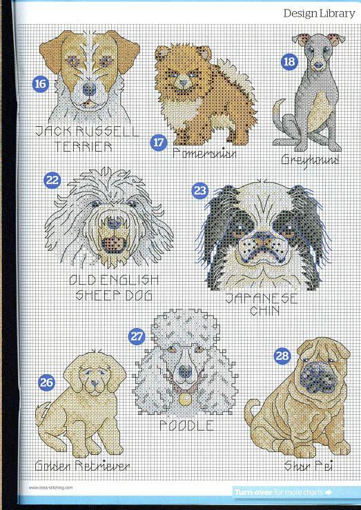 Hunde ...  (1) Gallery.ru / Foto # 5 - 15 - mikolamazur