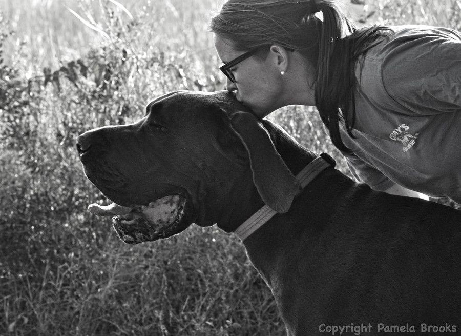 The Moose by Pamela Brooks on 500px