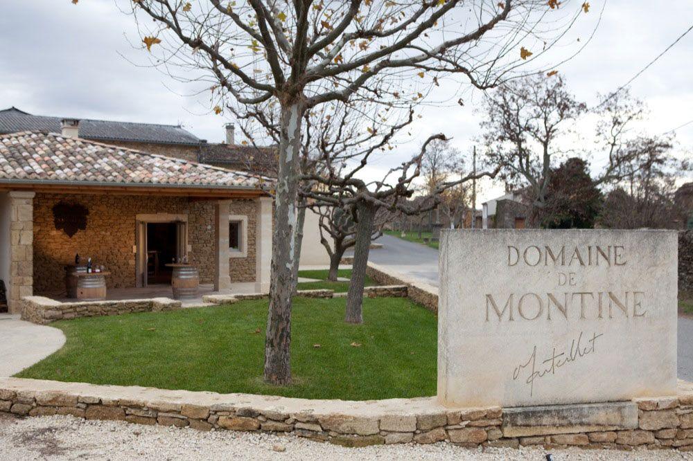 C'est en visitant ce lieu que le public comprendra le travail de la vigne et la passion de cette famille pour ce milieu. Source image: Domaine de Montigne
