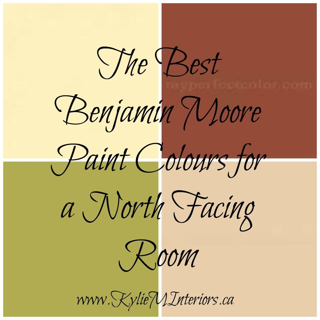 17 Best images about North Facing Room Paint on Pinterest  Donald