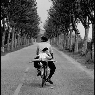 Elliott Erwitt, Provence. 1955.