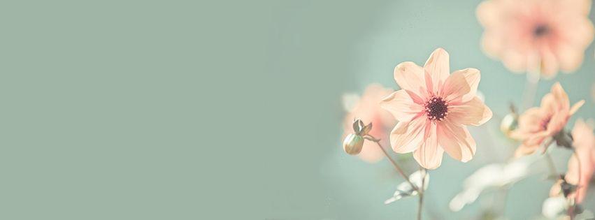 Pin De Cecilia En Facebook Portadas Para Facebook Tumblr