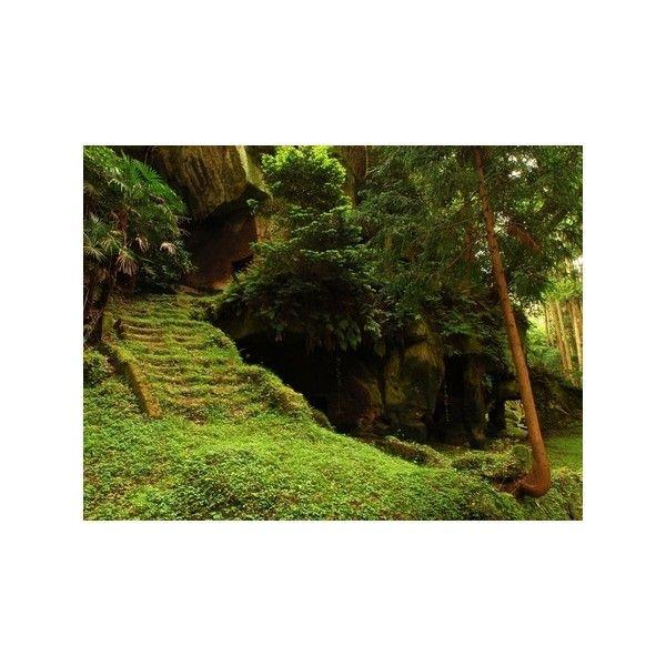 Hidden Forest Temple Forests Wallpaper 425148 Desktop