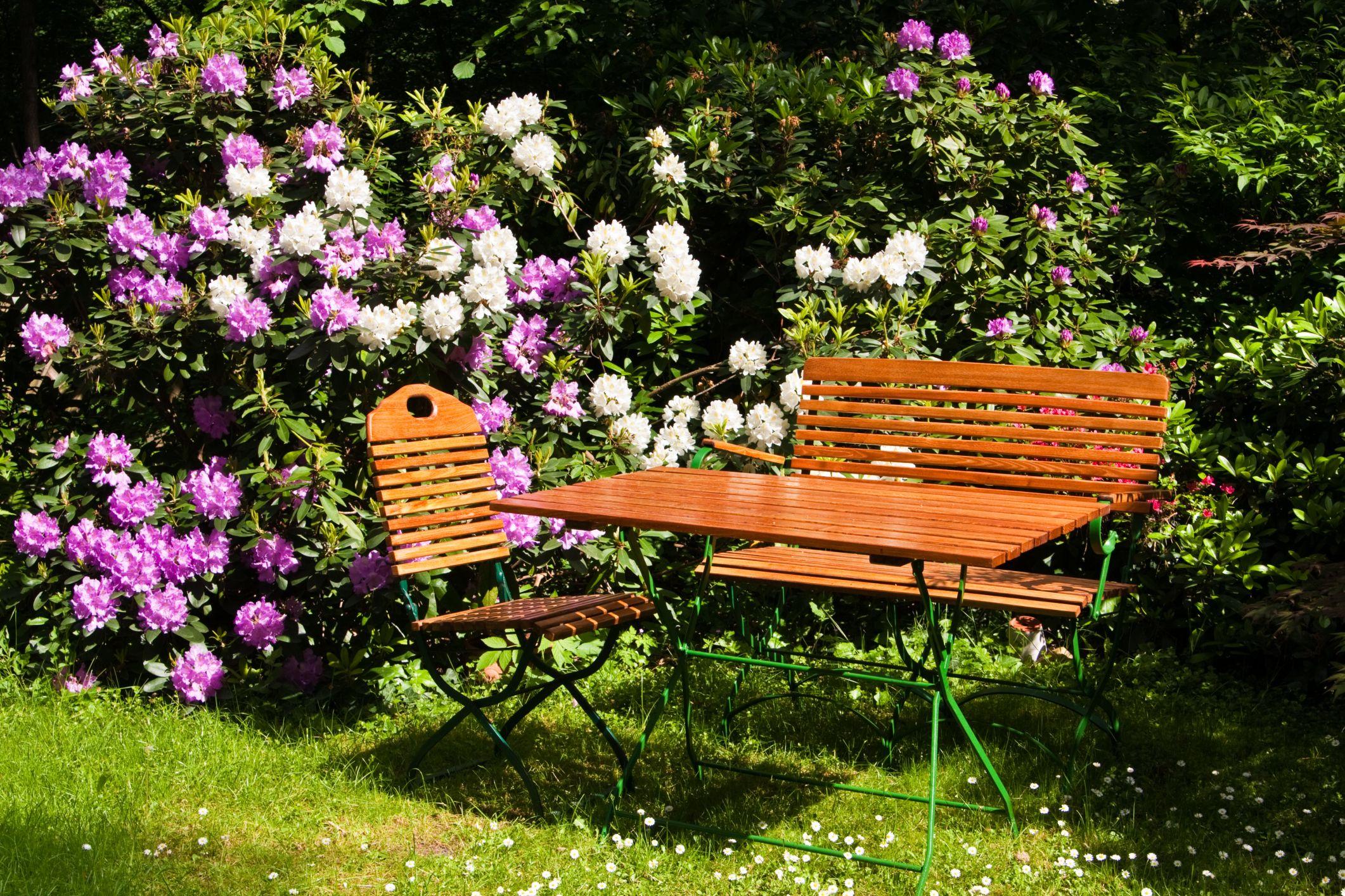 Jardines peque os con rosas inspiraci n de dise o de for Diseno de jardines pequenos