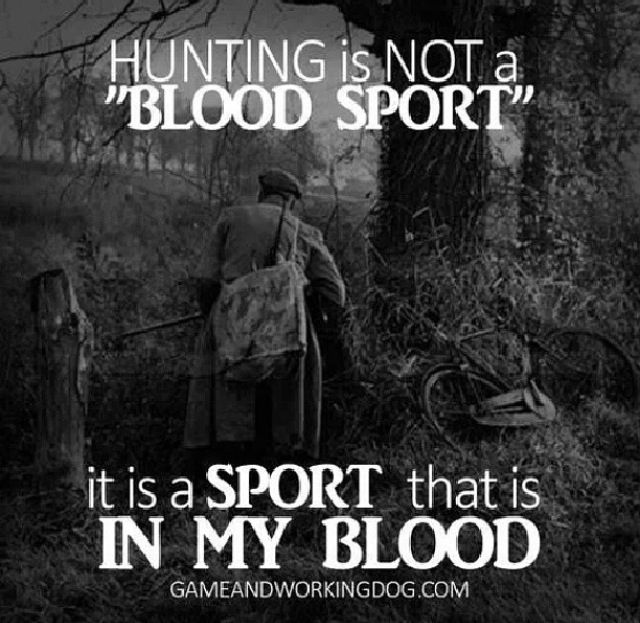 Account Suspended Hunting Quotes Hunting Hunting Humor