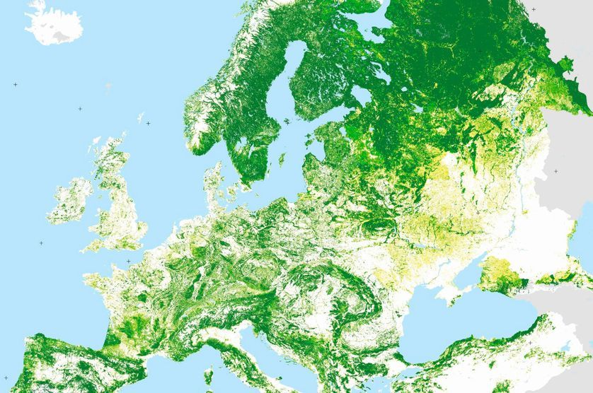 a portion of a forest map of europe showing the stark difference in tree cover in