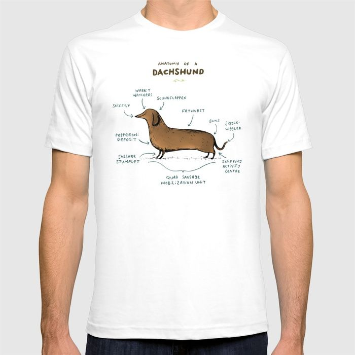 Anatomy of a Dachshund T-shirt Normal price: $24.99 - click/tap to ...