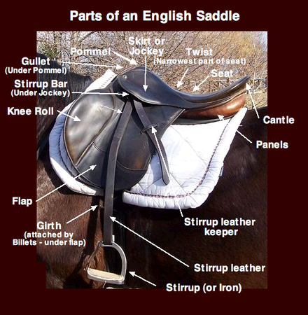 Saddle English Saddle Saddle Horse Riding Tips