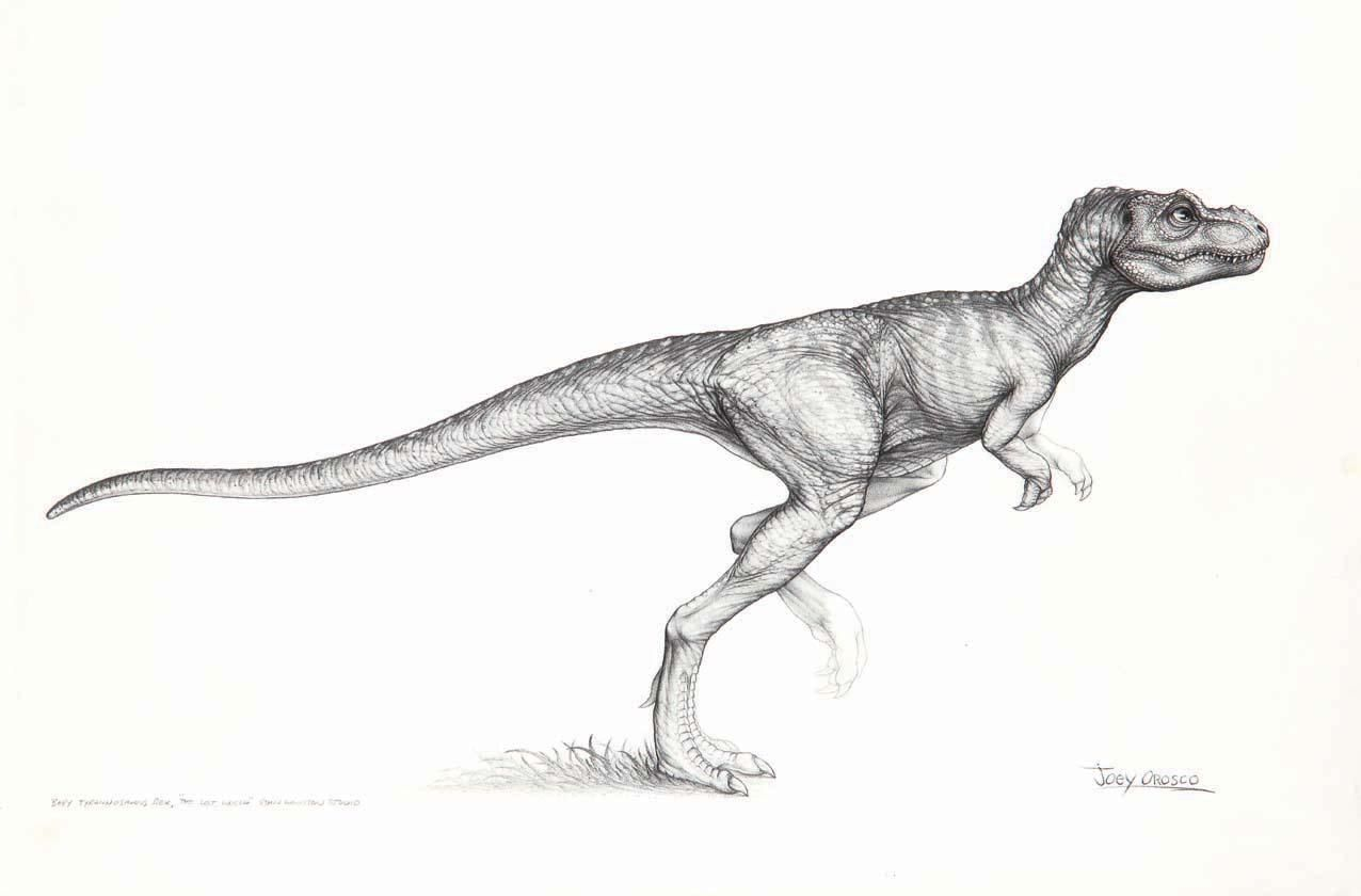 The Lost World Jurassic Park Baby Trex Drawing By Joey